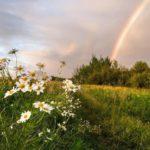 В выходные на территории Кировской области ожидается относительное похолодание