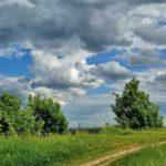 Малооблачно и +25°С: погода на пятницу в Кировской области