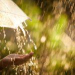 Синоптики обещают жителям Кировской области теплую, но дождливую пятницу