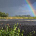Синоптики рассказали, какая погода ожидает жителей Кировской области в пятницу, 31 июля