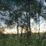 Прогноз на неделю: жителей Кировской области ждет теплая, но дождливая погода