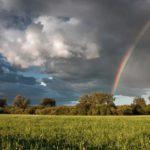 В пятницу в Кировской области ожидается +21°С и дожди с грозами