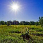 В среду жителей Кировской области ожидает ясный солнечный день