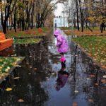 22 сентября жителей Кировской области ждет очередной дождливый день