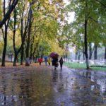15 сентября в Кировской области ожидаются дожди и +11°С