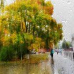 Синоптики рассказали о погоде, которая ожидает жителей Кировской области в среду, 16 сентября
