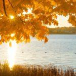 Синоптики рассказали о погоде в Кировской области в пятницу, 25 сентября