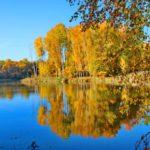 Солнечно и +17°С: погода в Кировской области на 27 сентября