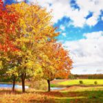 Синоптики рассказали, какая погода ожидает жителей Кировской области в понедельник, 28 сентября