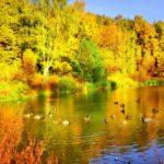 Синоптики рассказали, какая погода ожидает жителей Кировской области на выходных