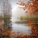 +14°С и дожди: погода в Кировской области на среду, 14 октября