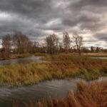 +8°С и дожди: погода в Кировской области в четверг, 15 октября