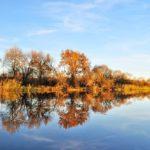 Синоптики рассказали, какая погода ожидает жителей Кировской области в среду, 28 октября