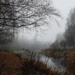 +4°С и дожди: погода в Кировской области на четверг, 29 октября