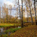 Синоптики рассказали, какая погода ожидает жителей Кировской области на понедельник, 12 октября