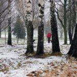 Погода на неделю: в Кировской области ожидается похолодание и снег