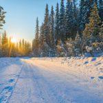 Новая неделя принесет в Кировскую область похолодание до -23°C