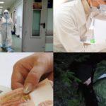 Итоги недели: коронавирус, резонансные преступления в районах Кировской области и новая партия вакцины от гриппа