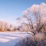 Солнечно и -8°С днем: погода в Кировской области на среду, 18 ноября