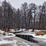 Переменная облачность и -2°С: погода в Кировской области в пятницу, 20 ноября