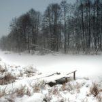 Пасмурно и -7°С: погода в Кировской области на пятницу, 27 ноября