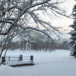 Синоптики рассказали, какая погода ожидает жителей Кировской области в последний день ноября