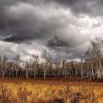+4°С и дожди: погода в Кировской области на воскресенье, 8 ноября