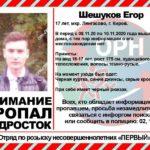В Кирове по факту исчезновения 17-летнего подростка возбуждено уголовное дело по статье «Убийство»