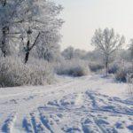 Синоптики рассказали, какой будет погода в Кировской области в среду, 20 января
