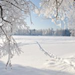 Переменная облачность и -14°С днем: погода в Кировской области на четверг, 21 января