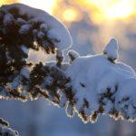Синоптики рассказали, какая погода ожидает жителей Кировской области в пятницу, 29 января