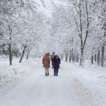 Пасмурно и -23°С днем: погода в Кировской области на вторник, 12 января