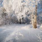 16 февраля в Кировской области похолодает до -25℃