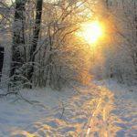 В Кировской области вновь объявлено метеопредупреждение