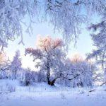 На неделе с 22 по 28 февраля в Кировской области ожидаются морозы до -34°C
