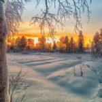 Жителей Кировской области ожидает морозная неделя