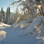 Синоптики рассказали, какая погода ожидает жителей Кировской области в воскресенье, 21 февраля