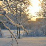 22 февраля жителей Кировской области ждет солнечный и морозный день