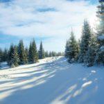 Синоптики рассказали, какая погода ожидает жителей Кировской области в пятницу, 26 февраля