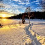 Солнечно и -13°С днем: погода в Кировской области на 28 февраля
